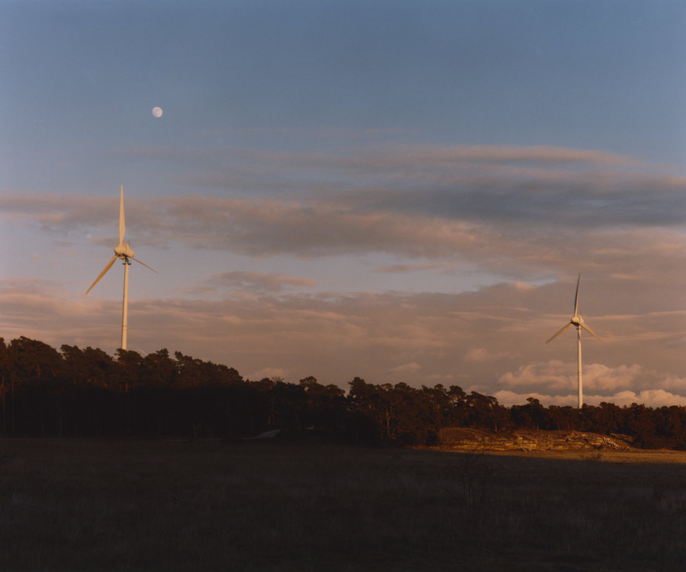 Gotland (4).jpg