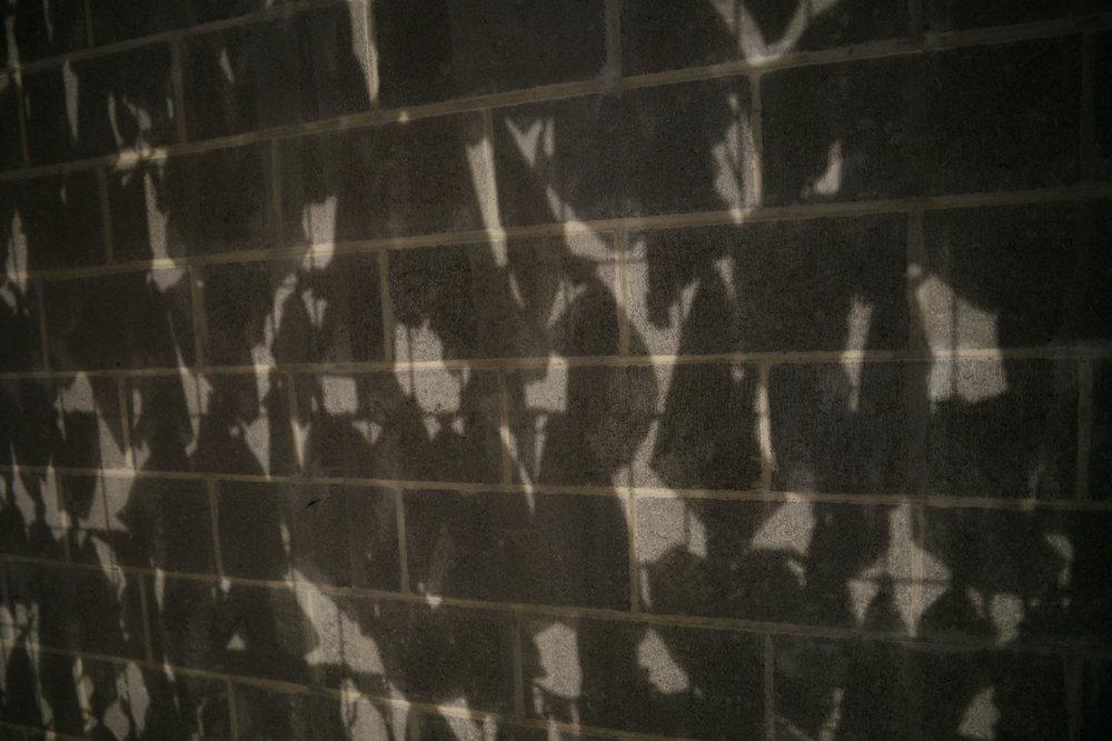 wall shadow final.JPG