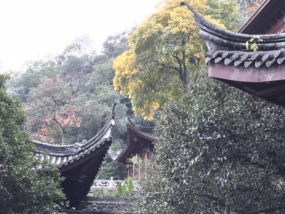 Hangzhou_IMG_0670.jpg