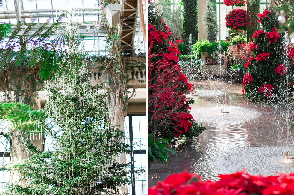 Longwood Gardens Christmas | Lifestyle | Engagement | Outdoor | Chester County, PA | Krista Brackin Photography