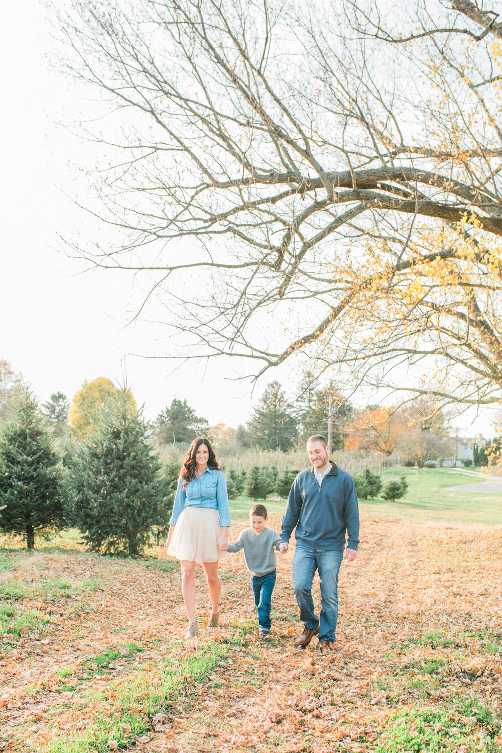 Holiday Mini Sessions Odell-145.jpg