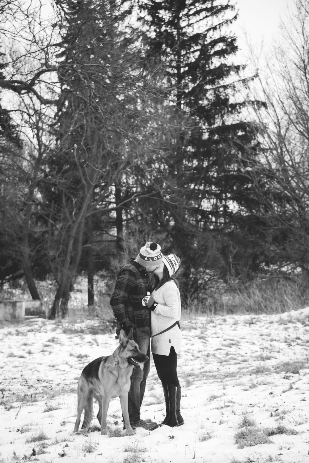 Engagement-Photos-Hamilton-Niagara-Toronto-Burlington-Oakville-Photographer-Engaged-Ring-Photography-Dog-Winter-Moments-by-Lauren-Image-15.png