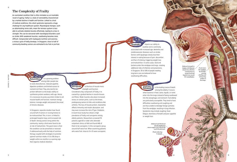 George-Anatomy-LFAR-20.jpg