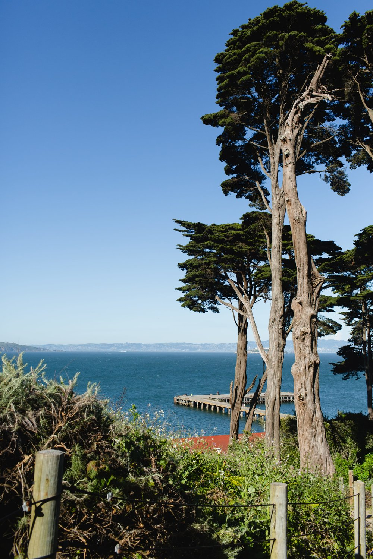 Spring_Morris_Photography_Travel_San_Francisco-1-34.jpg