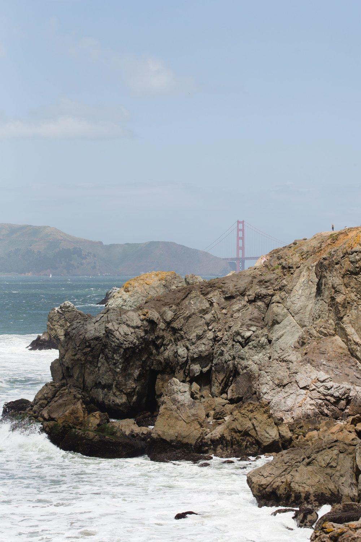 Spring_Morris_Photography_Travel_San_Francisco-1-37.jpg