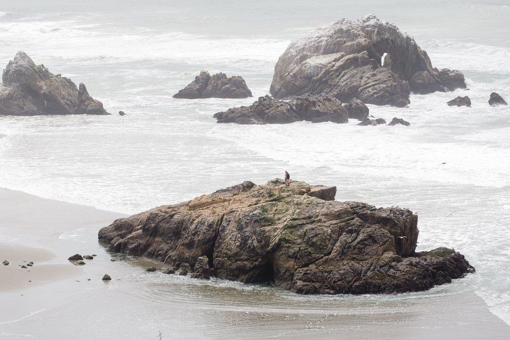 Spring_Morris_Photography_Travel_San_Francisco-1-38.jpg