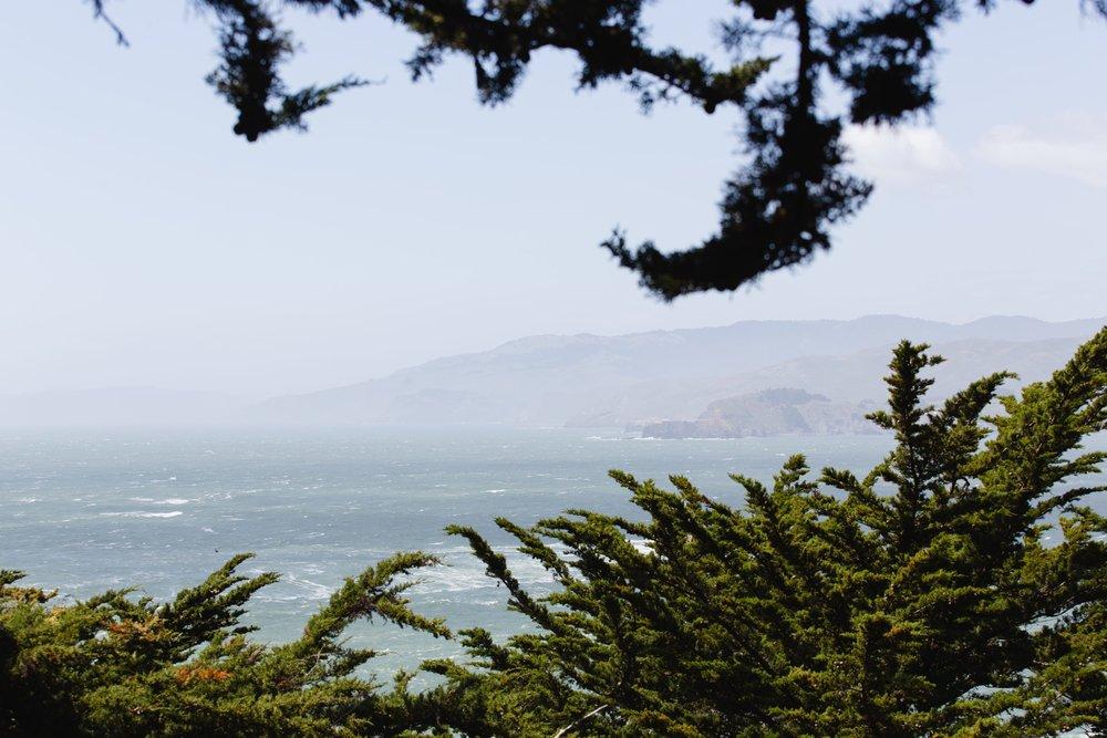 Spring_Morris_Photography_Travel_San_Francisco-1-40.jpg