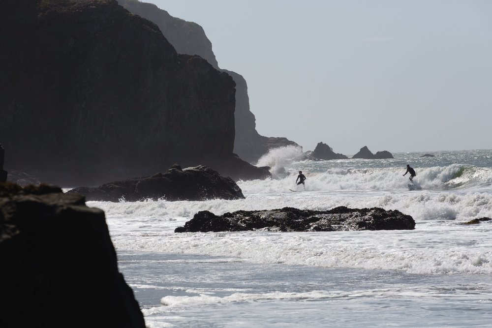 Spring_Morris_Photography_Travel_San_Francisco-1-46.jpg
