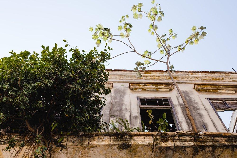 SpringMorrisPhotography_Travel_Havana_Cuba-1-58.jpg