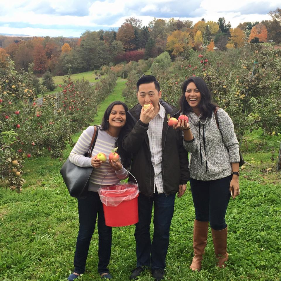 Apple picking_2.jpg