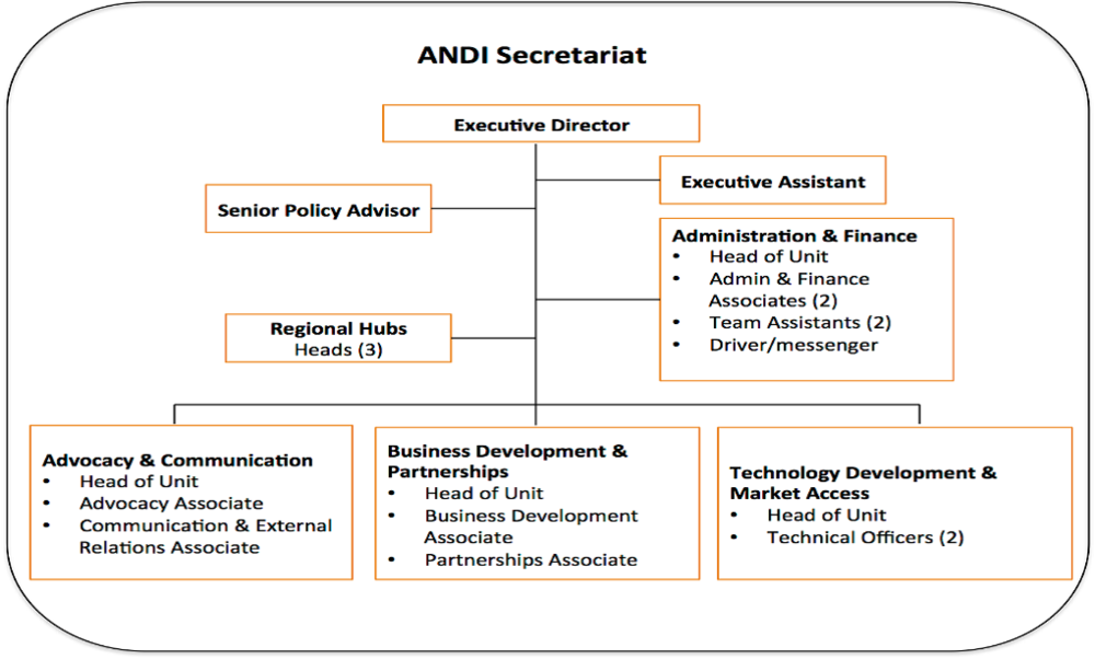 Figure VI: ANDI Secretariat Organogram. Note the lean and relatively flat structure of the ANDI Secretariat.