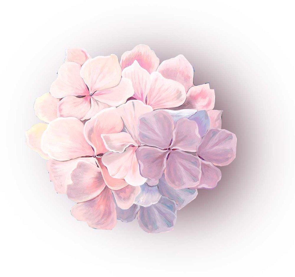 Eden-hortensia-breathclub.jpg