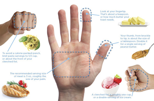 This is an excellent general guide for hand portioning, and the different food groups that relate
