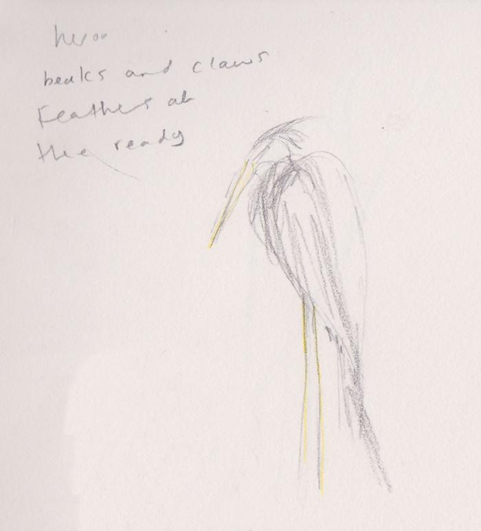 heron-formatted.jpg