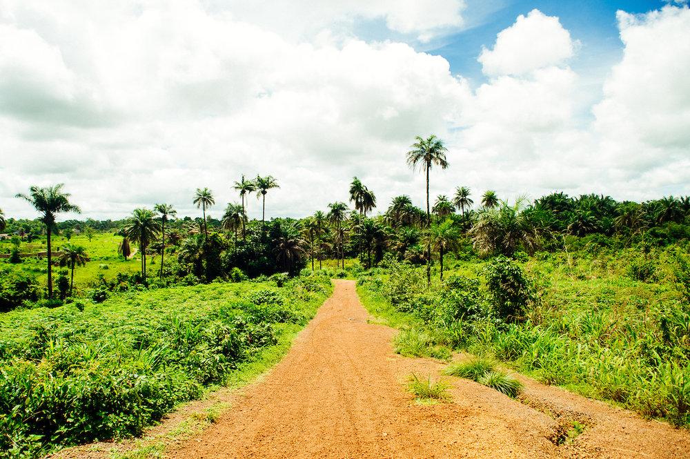 Projecten in Sierra Leone