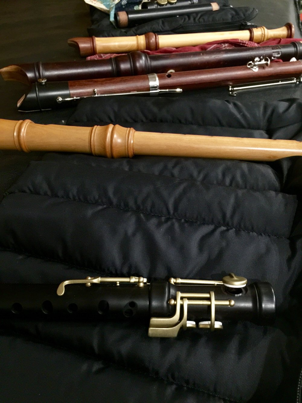 Just a few of the many recorders to be used for the program…