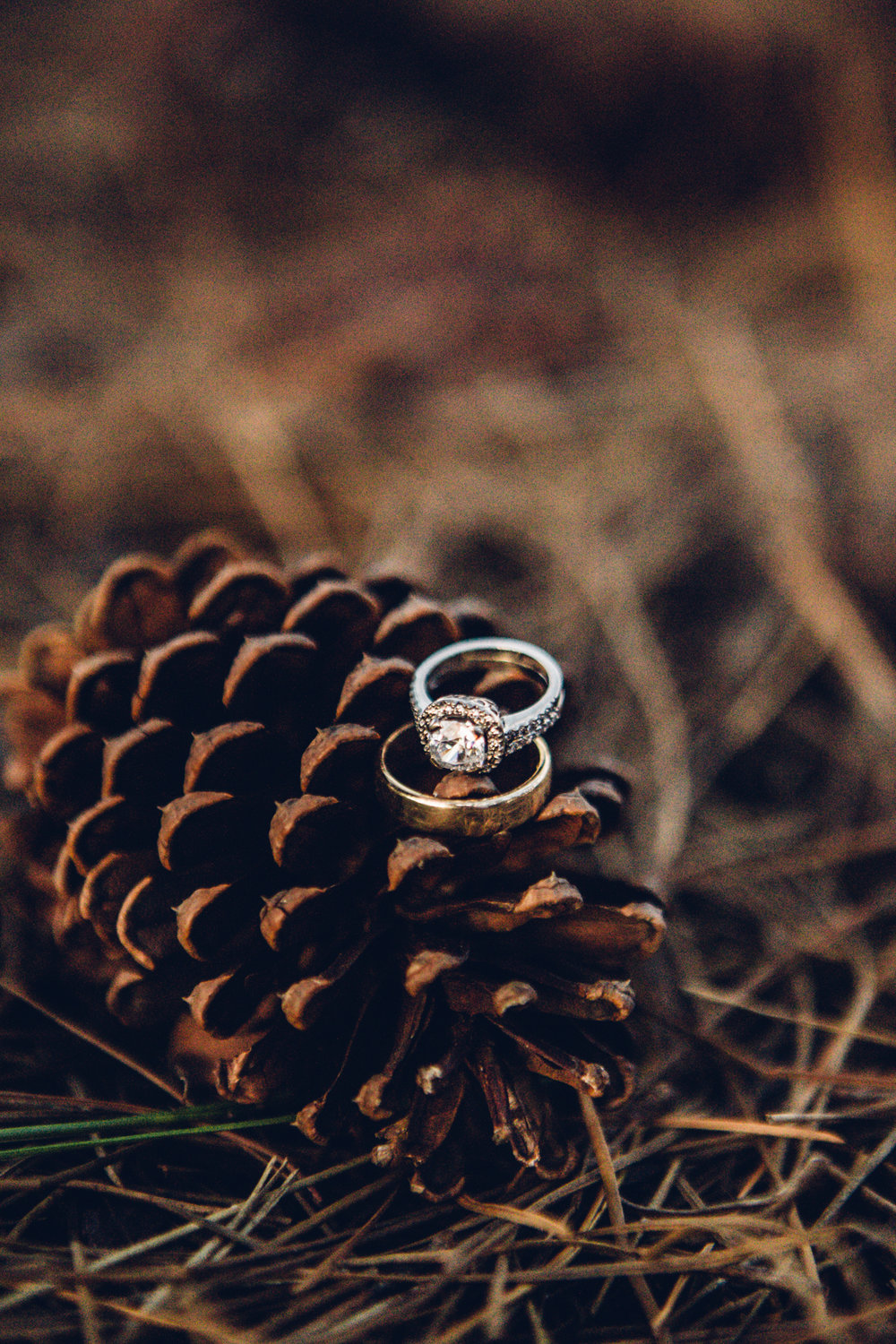 Danny & Karleigh by Get Together Photography small 235.jpg