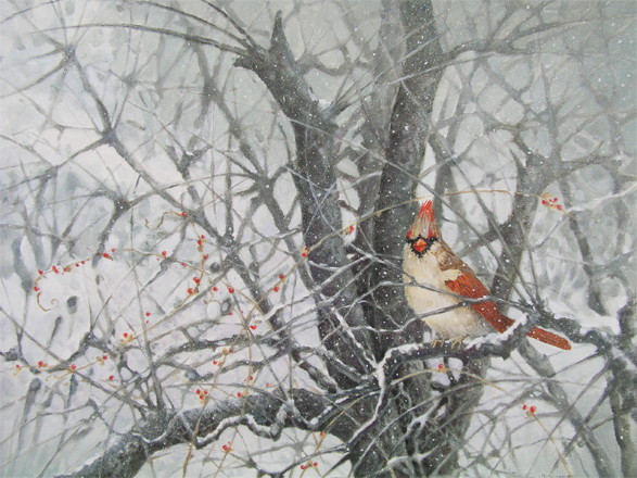 Winter Cardinal II