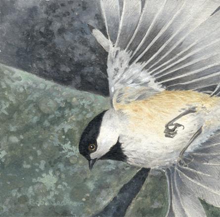 Mini Bird
