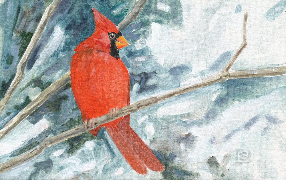 Cardinal on Watch