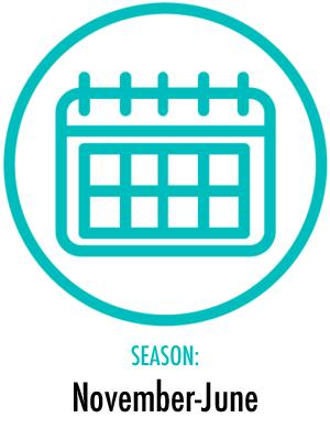Season November-June