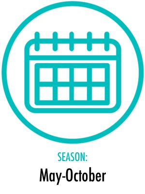 Season May to October