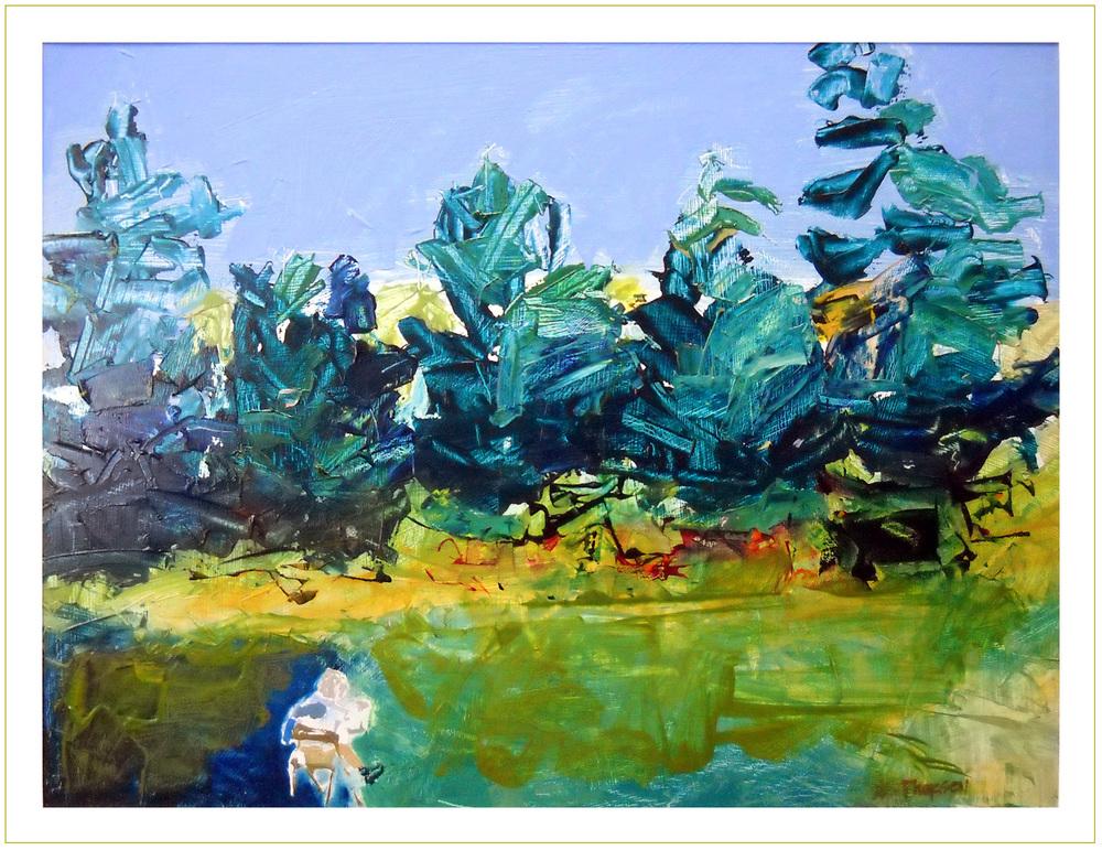 Blue Spruce no. 12