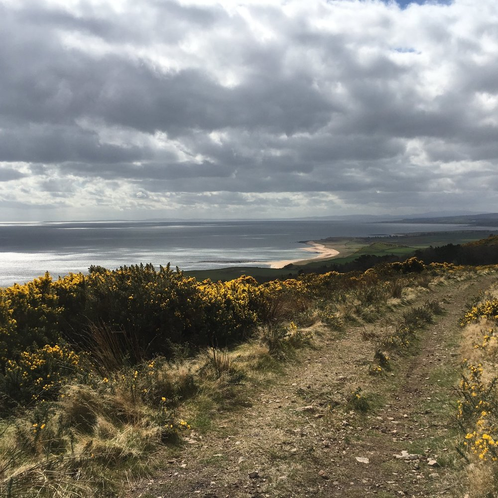 Other Professionals - We are regularly engaged by and work alongside a range of other professionals including:Town Planners;Architects;Urban Designers;Arboricultural Consultants; Engineers;Ecologists; and other Landscape Architects.Photograph: Helmsdale, SutherlandLearn more in Projects