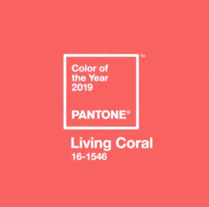 """This is Pantone's 2019 Color of the Year: Living Coral. Isn't it pretttty? 🧡 In Pantone's words, Living Coral is """"sociable and spirited. Symbolizing our innate need for optimism and joyful pursuits, Living Coral embodies our desire for playful expression....Representing the fusion of modern life, Living Coral is a nurturing color that appears in our natural surroundings and at the same time, displays a lively presence within social media."""" ⭐️ What do you think? 🤔 Can a color do all that?"""