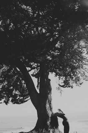 Sequoia Ziff Photography