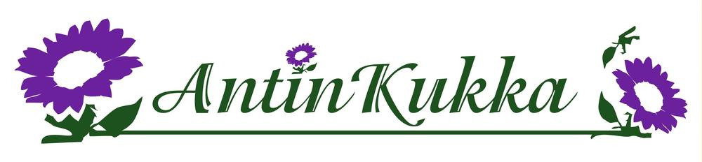 AntinKukka.png