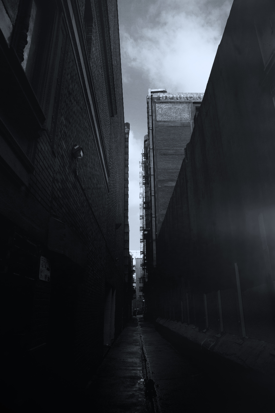 ALLEY-2-COLOR-BW.jpg