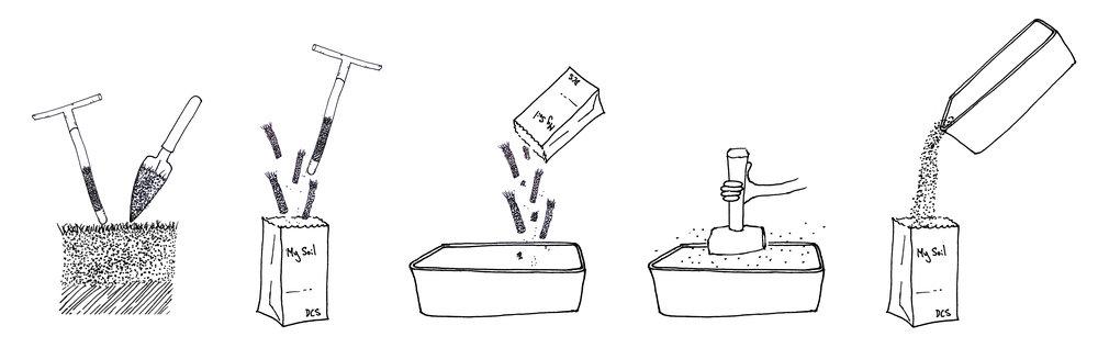 How to process samples cartoon copy.jpg