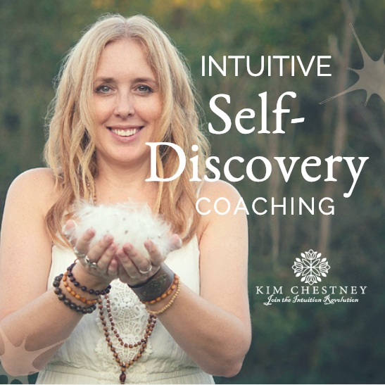 kim-chestney-intuition-coaching.jpg