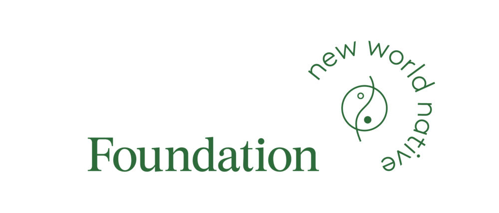 NWN001_Logo_IA_Foundation.png