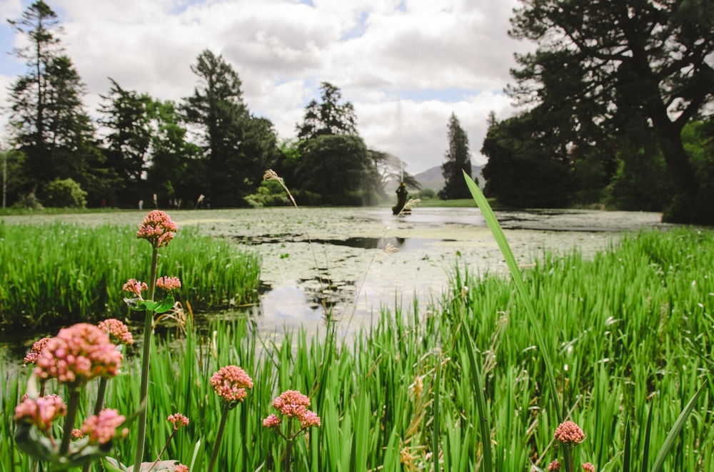 2015.05.26 Powerscourt 00010.jpg