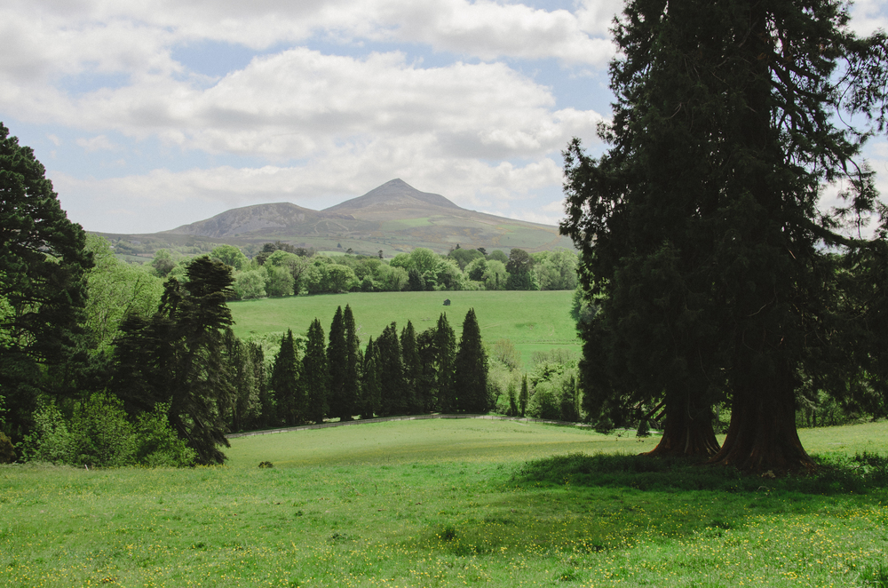 2015.05.26 Powerscourt 00054.jpg