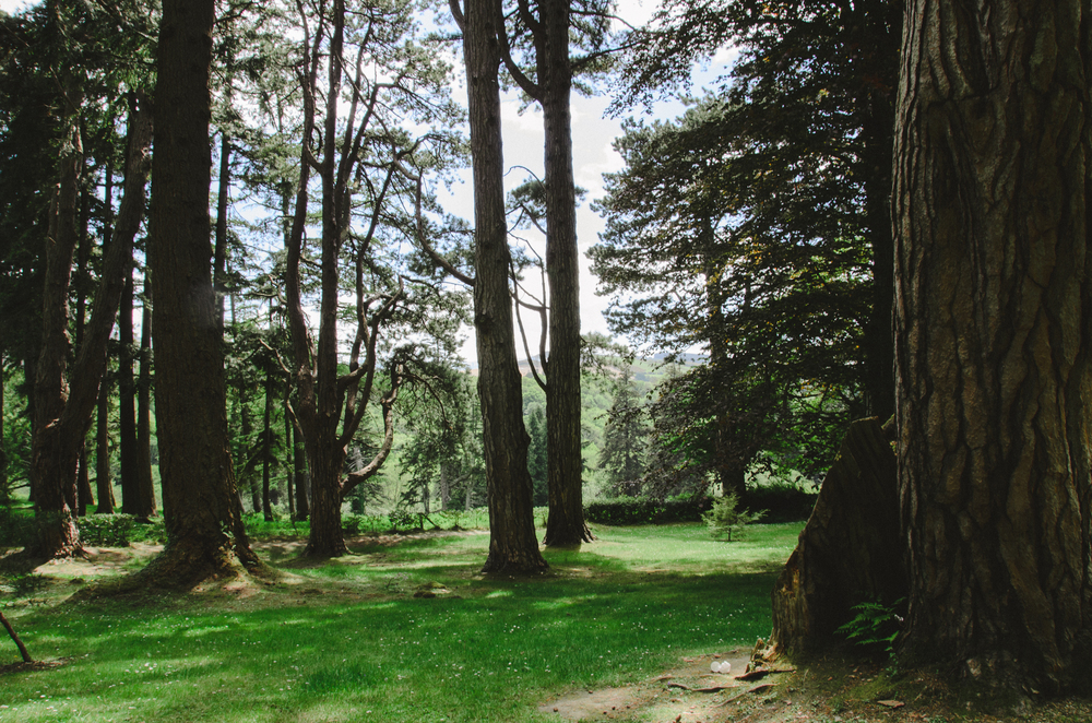 2015.05.26 Powerscourt 00066.jpg