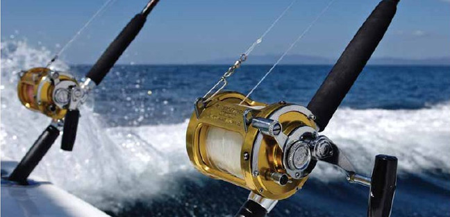 sport fishing in los cabos - the best big game fish tours in cabo - NAS ADVENTURES.jpg