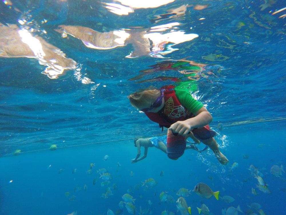 snorkeling-cabo-san-lucas-nas-adventures.JPG