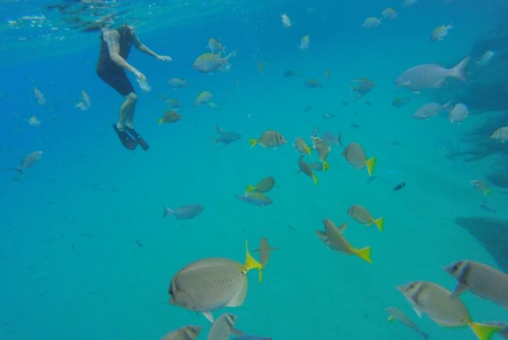Chileno & Santa Maria Bay -