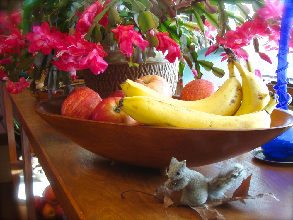 KF fruit & gray squirrel.JPG