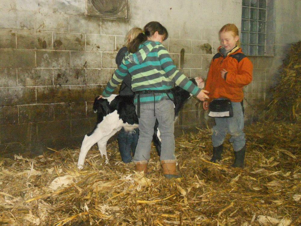 Farm Trip 009.JPG