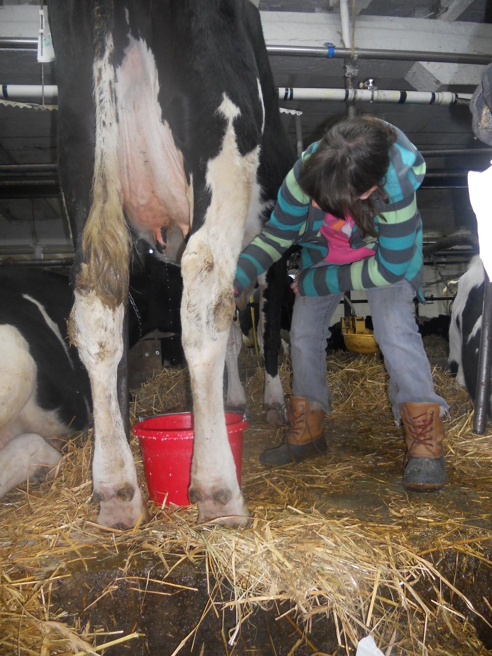 Farm Trip 010.JPG