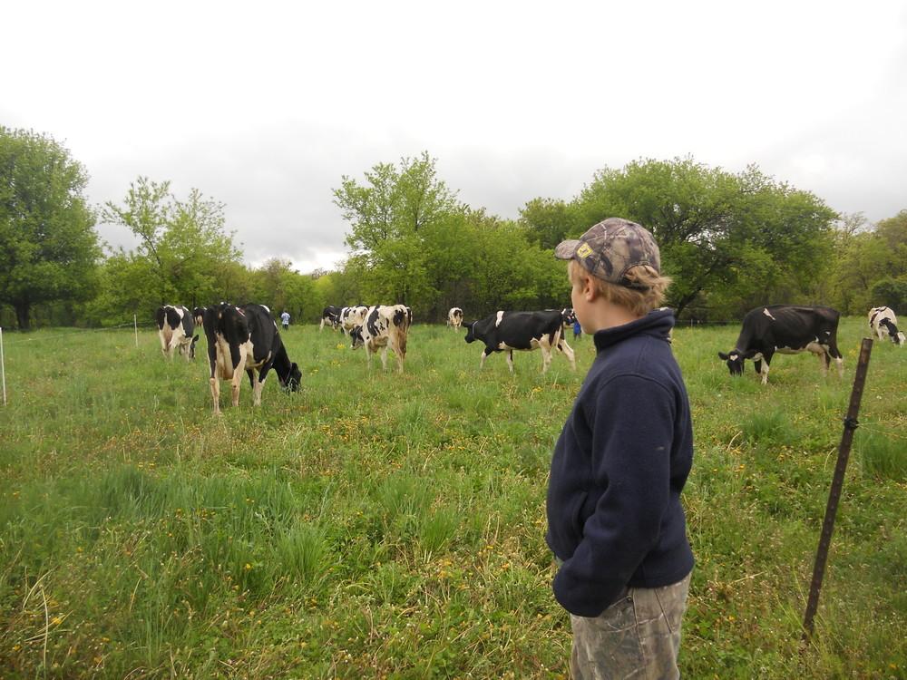 Farm Trip 016.JPG
