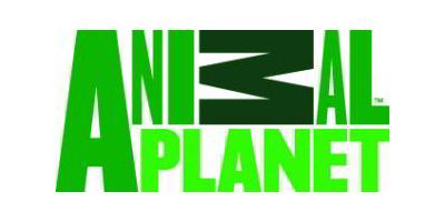 animal-planet2.jpg