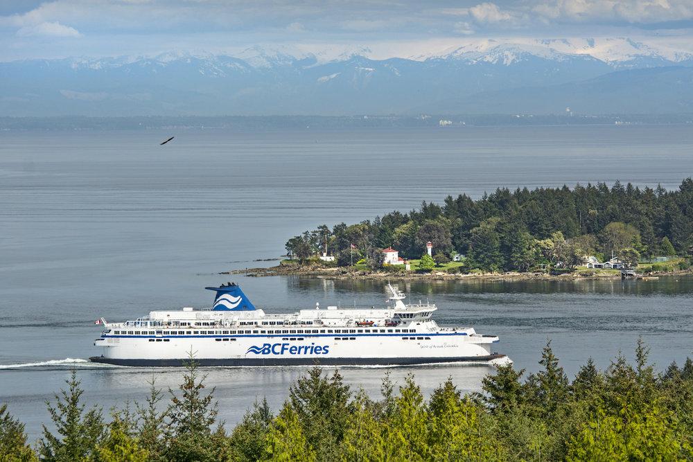 Ferry View.jpeg
