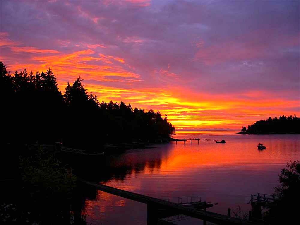 6. Whaler Bay sunrise.jpg
