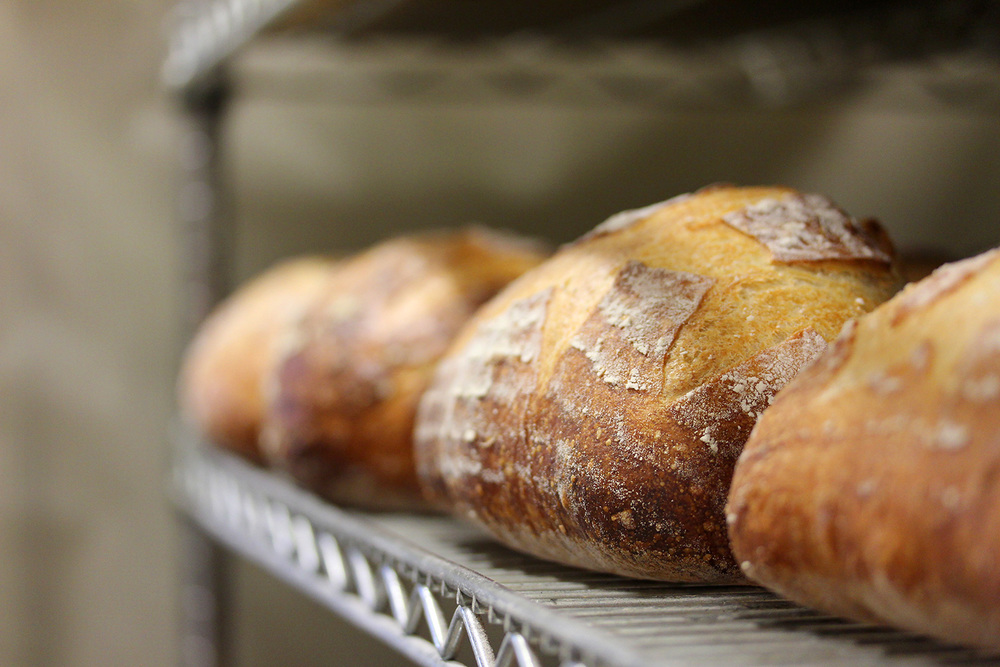 bread_4460_sm.jpg