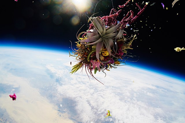 Flowers in outer space.Courtesy of Azuma Makoto
